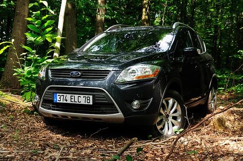 Ford Kuga dans les bois