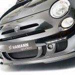 HAMANN-LARGO-Fiat-500-11