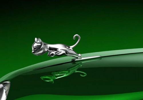 Une Jaguar, non une Matou...