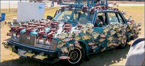sashimi-car