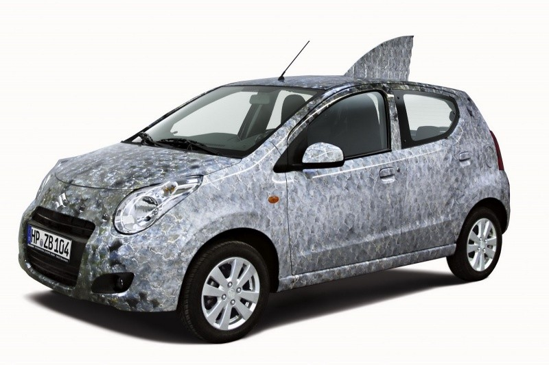 Suzuki-Alto-Fish-1