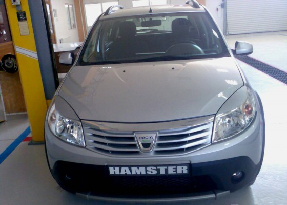Dacia Hamster Hybrid >> [Dacia] Stepway Hamster Hybrid