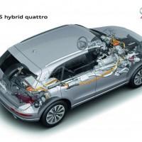 Q5-Hybrid.15-200x200