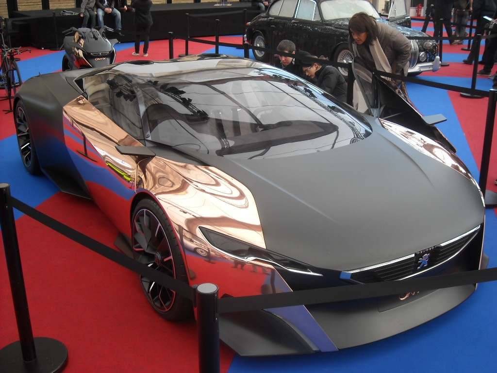 Exposition Concept Cars 2013 (74)