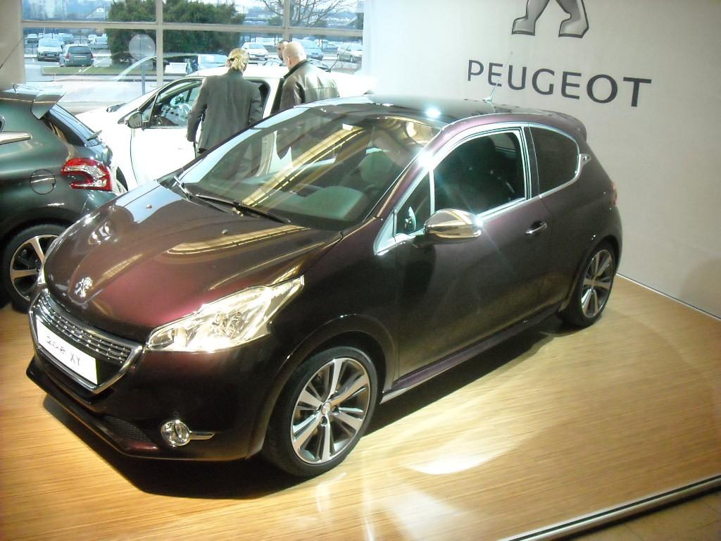 Peugeot 208 300 000 ex Poissy (26)