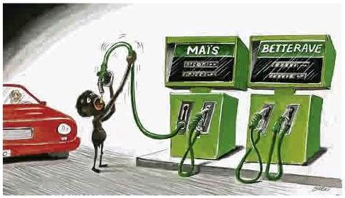 burki_biocarburant