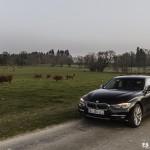 BMW Hybrides